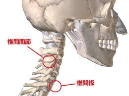 頚椎椎間関節